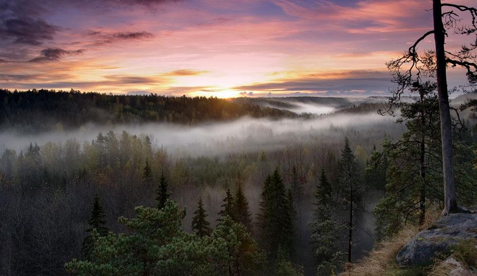 Traumlandschaft Finnland Campingplatz